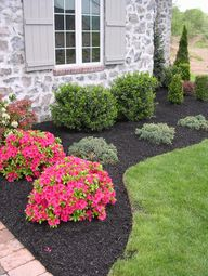simple landscpaing to increase the value of your home